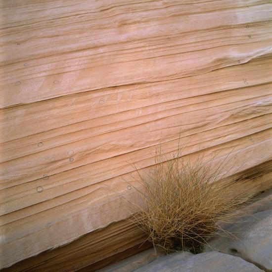 Sandstone Cliff-Micha Pawlitzki-Photographic Print