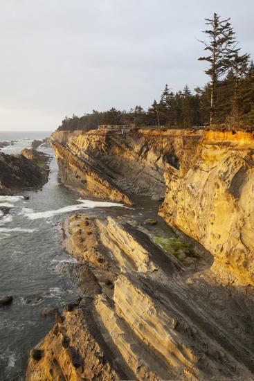 Sandstone Cliffs and Coastline, Shore Acres State Park, Oregon, USA-Jamie & Judy Wild-Photographic Print