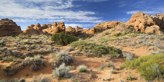 Sandstone Formations in the Devils Garden, Arches National Park, Utah, Usa-Rainer Mirau-Photographic Print