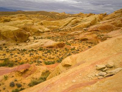 Sandstone Formations in Valley of Fire-John Eastcott & Yva Momatiuk-Photographic Print