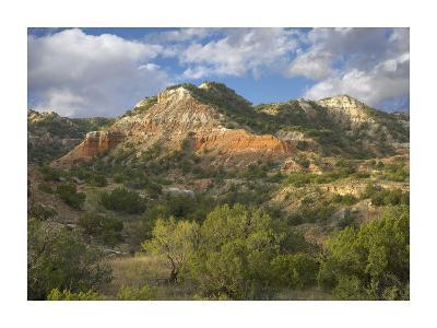 Sandstone mountains, Palo Duro Canyon State Park, Texas-Tim Fitzharris-Art Print