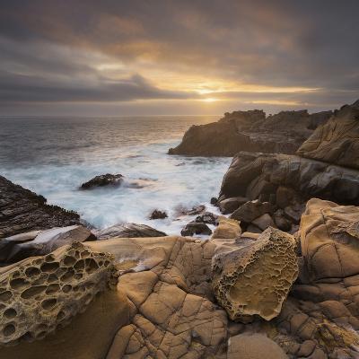 Sandstone, Salt Point State Park, Sonoma Coast, California, Usa-Rainer Mirau-Photographic Print
