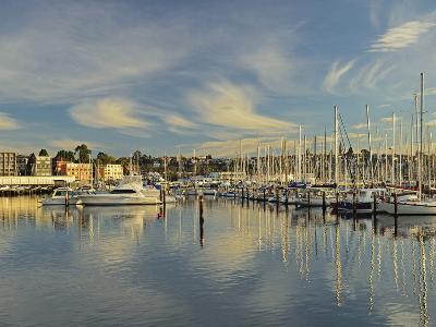 Sandy Bay, Hobart, Tasmania, Australia, Pacific-Jochen Schlenker-Photographic Print