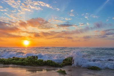 https://imgc.artprintimages.com/img/print/sandy-s-sunrise_u-l-q103kin0.jpg?p=0
