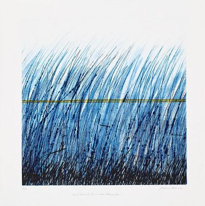 Sanft liegt die Linie im Gras-Johannes Haider-Limited Edition