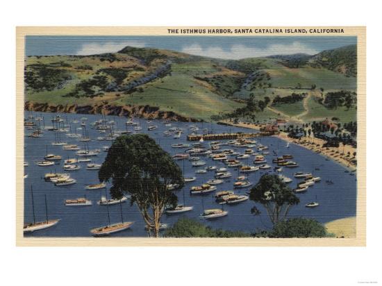 Santa Catalina, California - View of the Isthmus Harbor-Lantern Press-Art Print