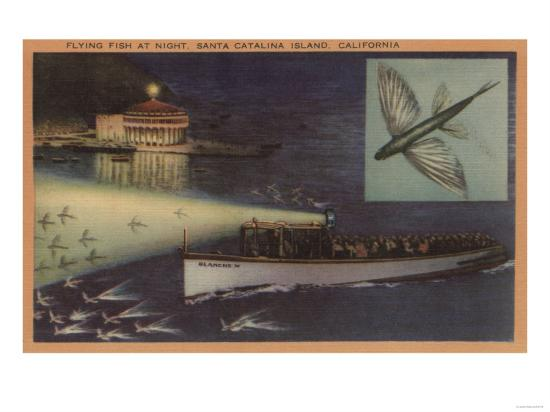 Santa Catalina Island, CA Casino, Flying Fish, Boats View - Santa Catalina, CA-Lantern Press-Art Print