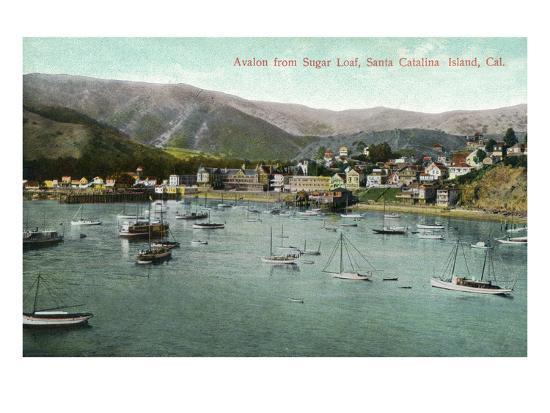 Santa Catalina Island, California - View of Avalon Bay from Sugar Loaf-Lantern Press-Art Print