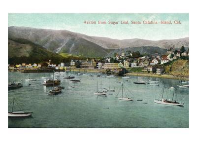https://imgc.artprintimages.com/img/print/santa-catalina-island-california-view-of-avalon-bay-from-sugar-loaf_u-l-q1gp6pp0.jpg?p=0