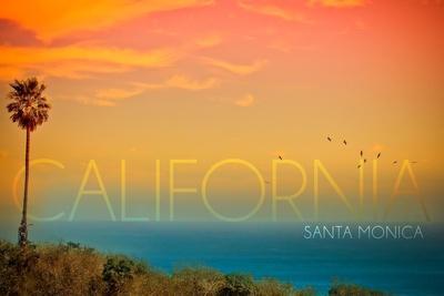 https://imgc.artprintimages.com/img/print/santa-monica-california-sunset-and-bird_u-l-q1gqpa30.jpg?p=0