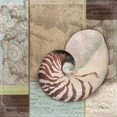 Santa Rosa Shell II-Paul Brent-Art Print