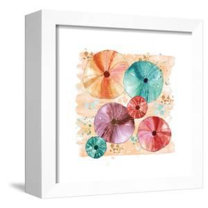 Beachcomber Sea Urchins by Sara Berrenson