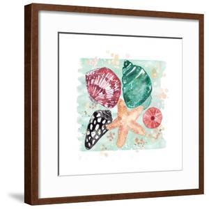 Beachcomber Shells by Sara Berrenson