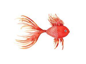 Deep Sea Red Fish by Sara Berrenson