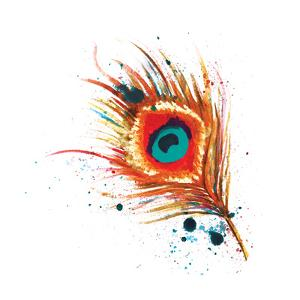 Feathers I by Sara Berrenson