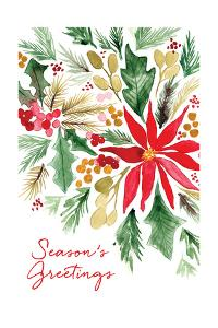 Poinsettia Pine by Sara Berrenson