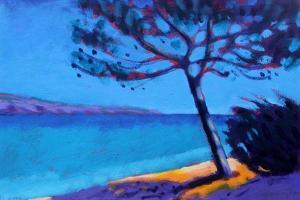 Pine Trees by Sara Hayward