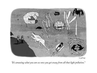 """""""It's amazing what you can see once you get away from all that light pollu..."""" - New Yorker Cartoon"""