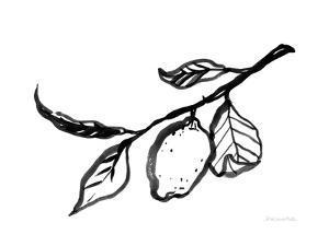 Ink Lemon by Sara Zieve Miller