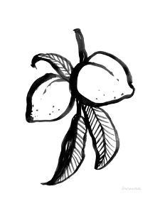 Ink Peaches by Sara Zieve Miller