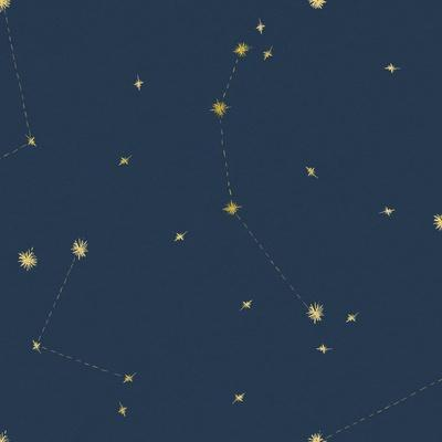 Night Sky Navy and Gold Pattern 05A