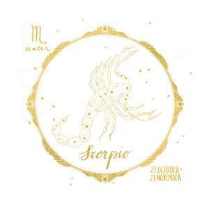 Night Sky Scorpio White and Gold by Sara Zieve Miller