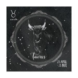 Night Sky Taurus by Sara Zieve Miller