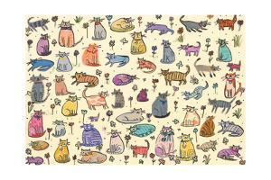 52 Cats, 2017 by Sarah Battle