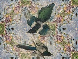 Birds In Flight by Sarah Butcher