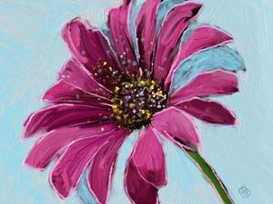 Daisy Crazy by Sarah Butcher