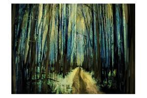 Forest Path 1 by Sarah Butcher