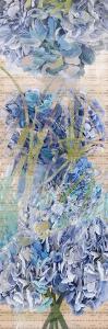 Hydragea 1 by Sarah Butcher