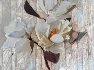 Magnolia1 by Sarah Butcher