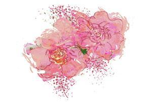 Pink Peonies by Sarah Butcher