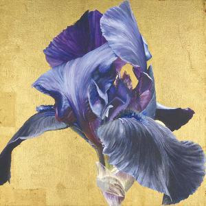 Golden Blue by Sarah Caswell