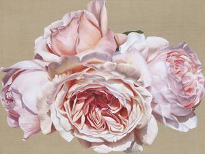 Roseate Dreaming by Sarah Caswell
