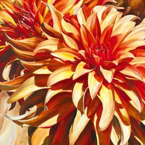 Sun Dahlia by Sarah Caswell
