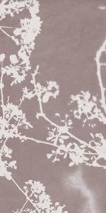 Florets in Grey by Sarah Cheyne