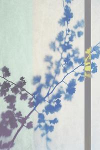 Hawthorn Stripe by Sarah Cheyne