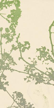 Nature Florets