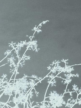 Woodland Blossom