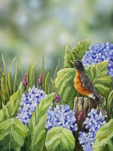 Robin with Hydrangeas by Sarah Davis