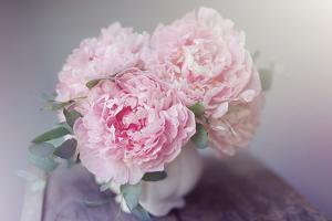 Bouquet of Blooms by Sarah Gardner