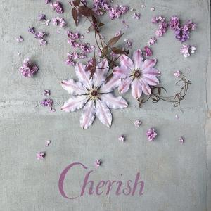 Cherish by Sarah Gardner
