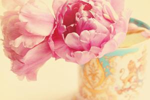 Elegant Vase by Sarah Gardner
