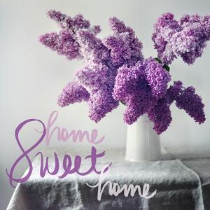 Home Sweet Home by Sarah Gardner