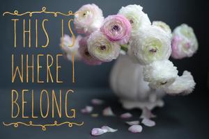I Belong by Sarah Gardner