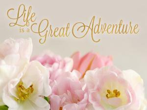 Life is a Great Adventure by Sarah Gardner