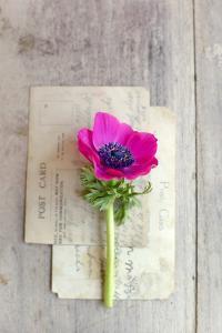 Love Note by Sarah Gardner