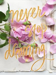 Never Stop Dreaming by Sarah Gardner
